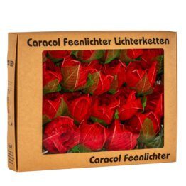 Feenlichter LED Lichterkette Rosen Groß 20L Rot Verpackung