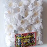 Feenlichter LED Lichterkette Lilien Weiß 20L Neue Verpackung