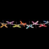Feenlichter Libellen Rainbow