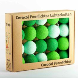 LED Lichterkete Feenlichter Bamboo Verpackung 20L