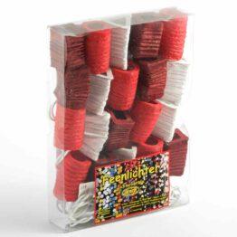 Feenlichter LED-Lichterkette Laternchen Cherry 20L Verpackung