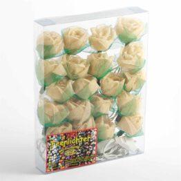 Feenlichter Rosen Groß Creme 20L Verpackung
